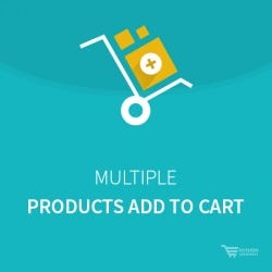 Multiple Products Add to Cart